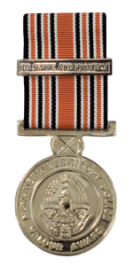 Web-400h_NTP-Valour-Medal.png