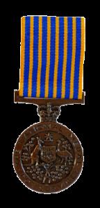 Web-400h_National-Medal.png